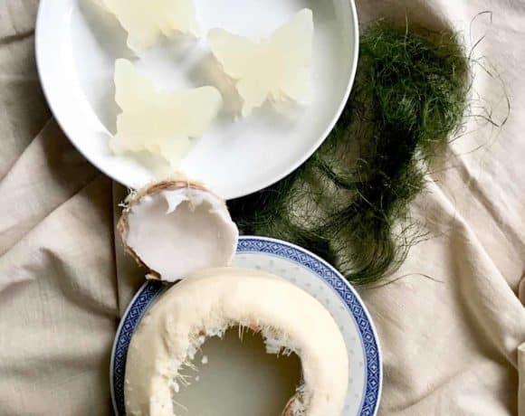 No sugar added agar agar jelly presented in a coconut husk
